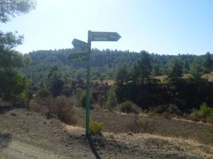 Kyprovasa 3