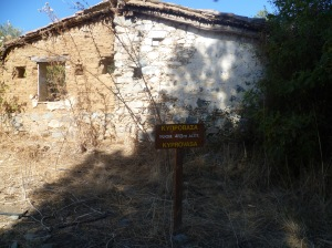 Kyprovasa 4