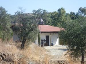 Kyprovasa 5